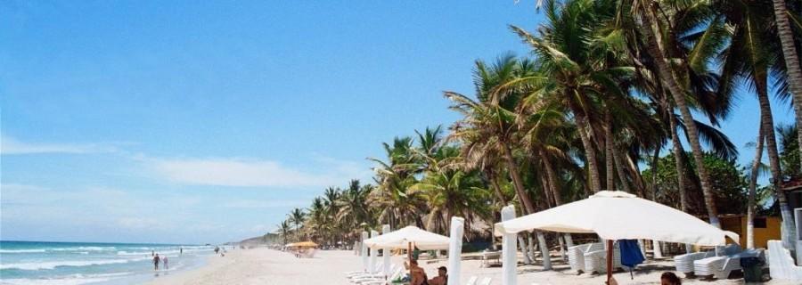 Margarita playa con sillas y parasoles--